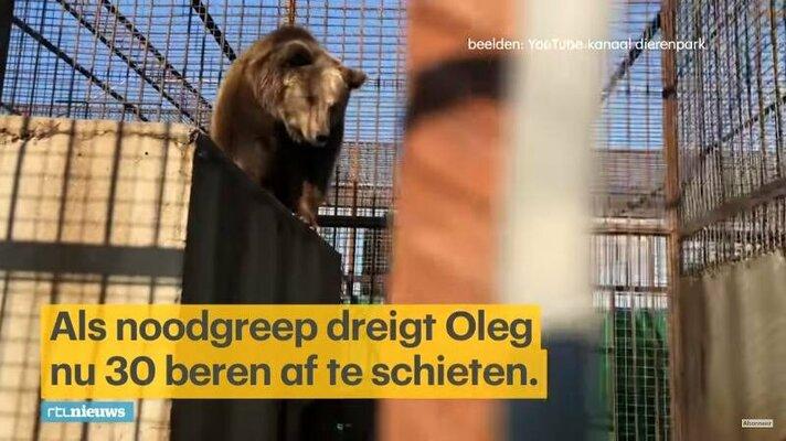 Wat Bears in Mind weet over de 30 beren in de Krim