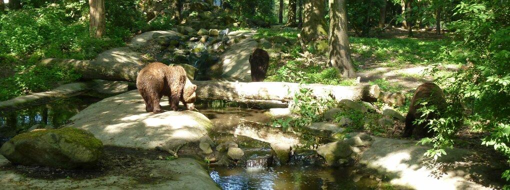 Beren beschermen